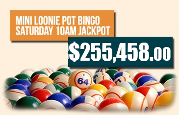 Mini Loonie Pot Bingo